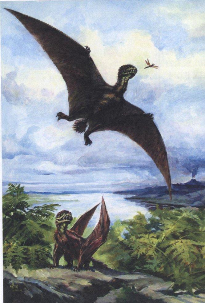 最大的翼龙是风神翼龙(羽蛇神翼龙).