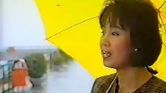 一样的天空 1987金曲重温