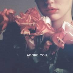 adore you(cedric gervais remix)