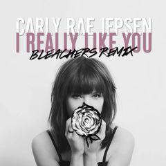 i really like you(bleachers remix)