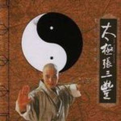 1993.太极张三丰