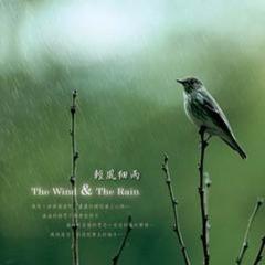 大自然音乐系列 轻风细雨
