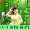 柳韵 (单曲)