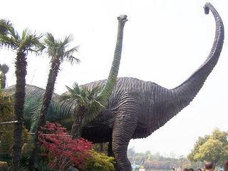 华恐龙园博物馆已经有几年的历史